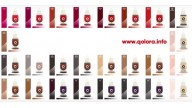 Permanent Make-Up & Qolora pigments PROMO